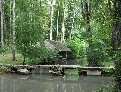 Camping Mimizan Lac : un emplacement idéal pour visiter les Landes