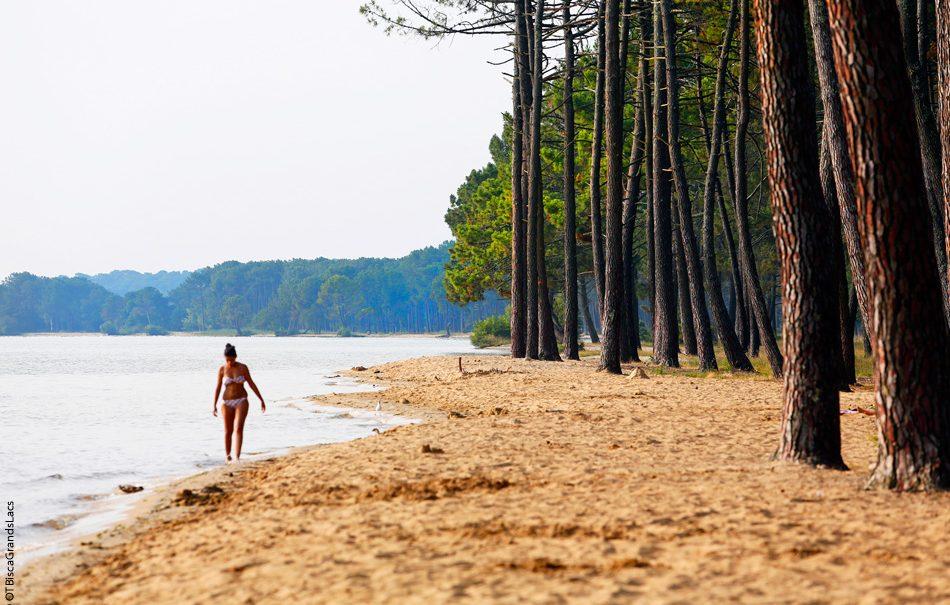Où faire du camping près du lac Biscarrosse et de Parentis ?