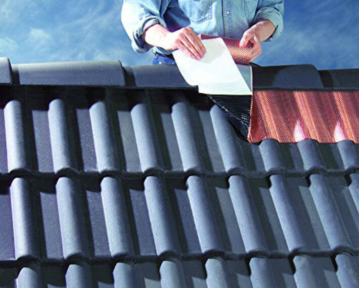 Comment protéger sa toiture de la mousse ?